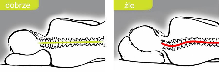 Poduszki ortopedyczne - ułożenie kręgosłupa